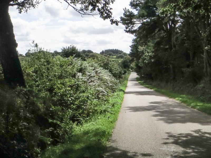An English lane?