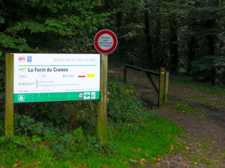 Le Cranou Forest