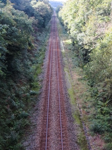 The railway line through the Forest of Cranou