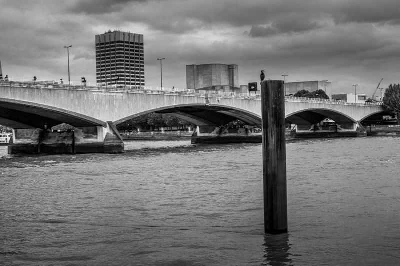 Watching Waterloo Bridge