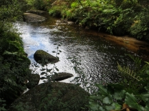 The Ellez River, beyond St Herbot