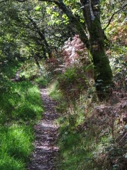 UP the hill towards Croas Melar