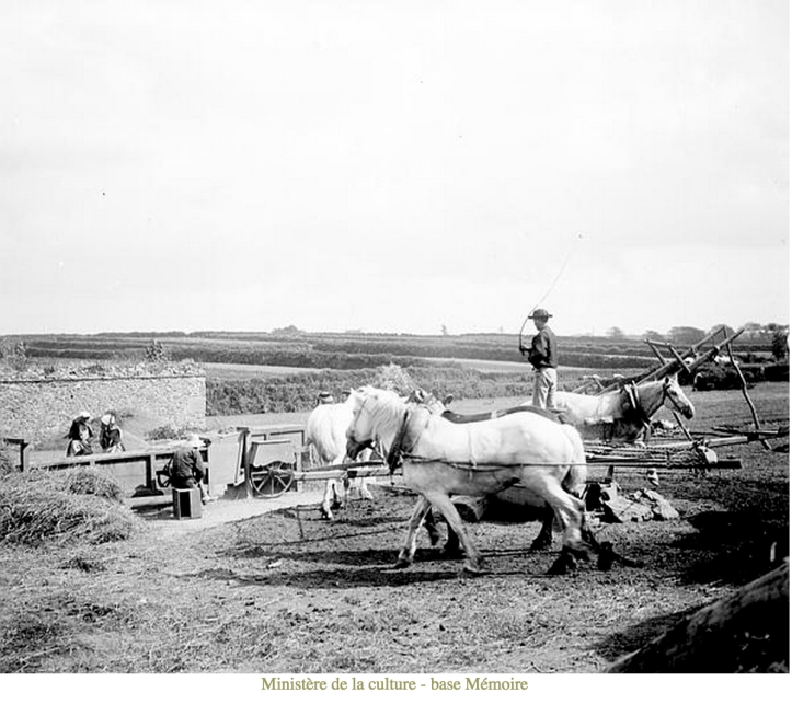 Farming at Le Folgoet