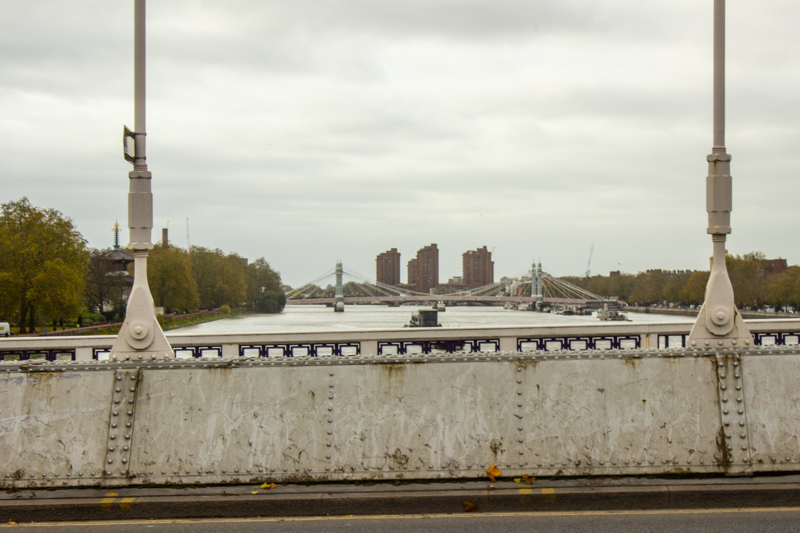 Looking upstream towards Albert Bridge