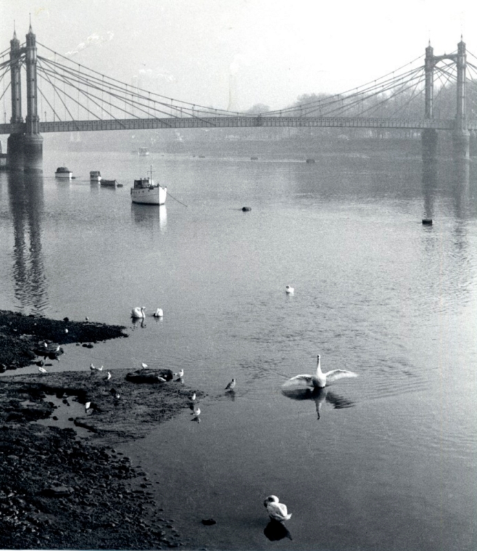 Albert Bridge before 1973, John Bignell (https://rbkclocalstudies.wordpress.com/category/chelsea/page/3/)