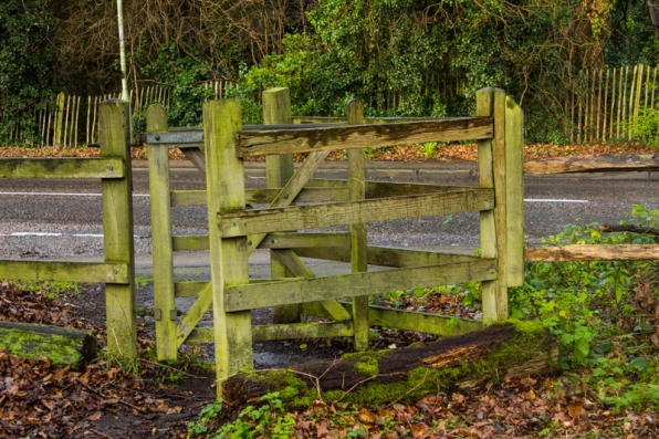 An entry gate into Padmall Woods