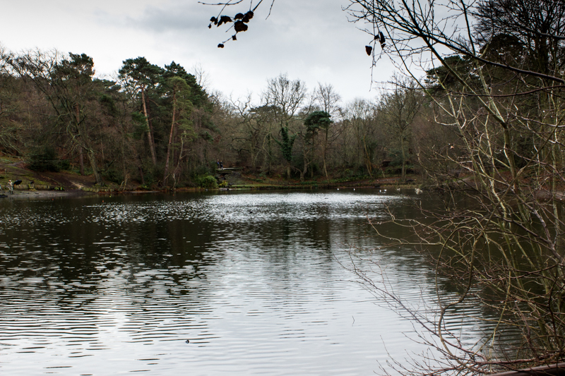 The lower Keston Pond