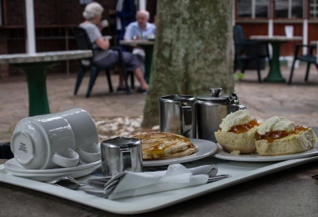 Tea in the Durban Botanic Gardens