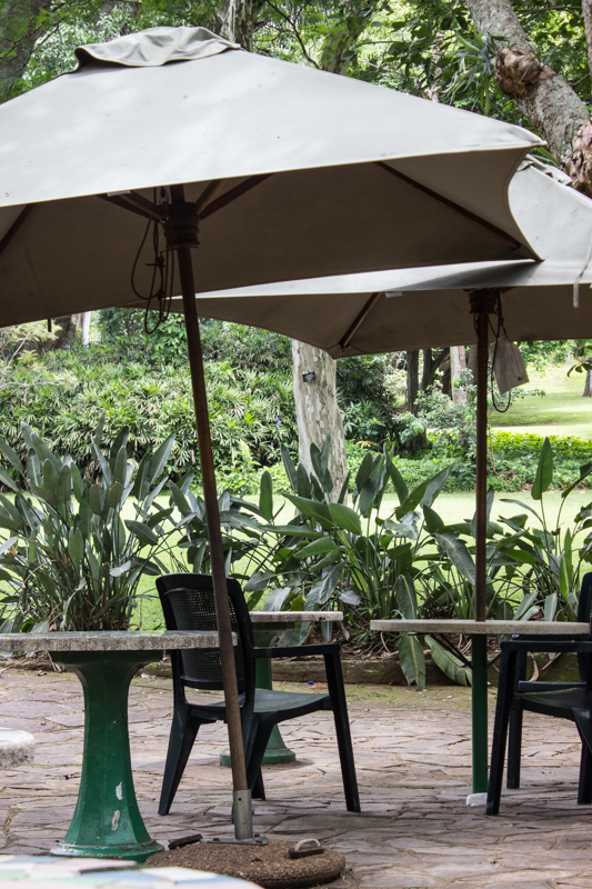 The tea house in the Durban Botanic Gardens