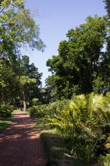 16-1-30 Durban Botanic Gardens HR-9462