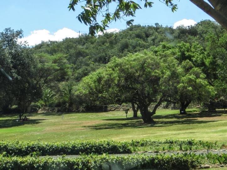 The parkland of the Oliewenhuis Art Museum, Bloemfontein