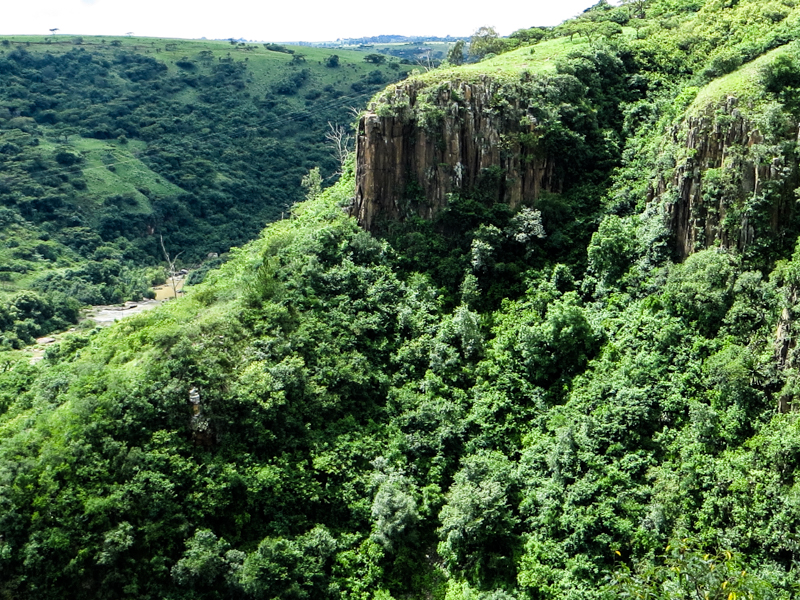 The gorge of the uMgeni River at Howick