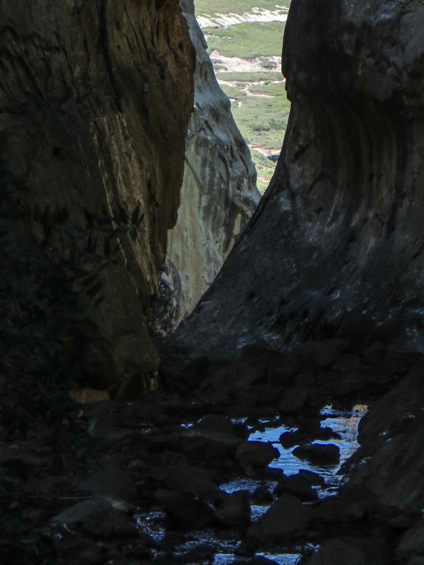 Echo Ravine in the Golden Gate National Park