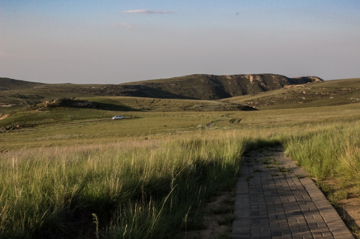 The Oribi Loop