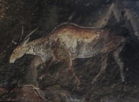 Bushman art in the National Museum, Bloemfontein