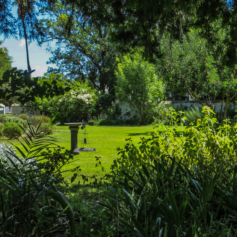 The garden at Reinet House
