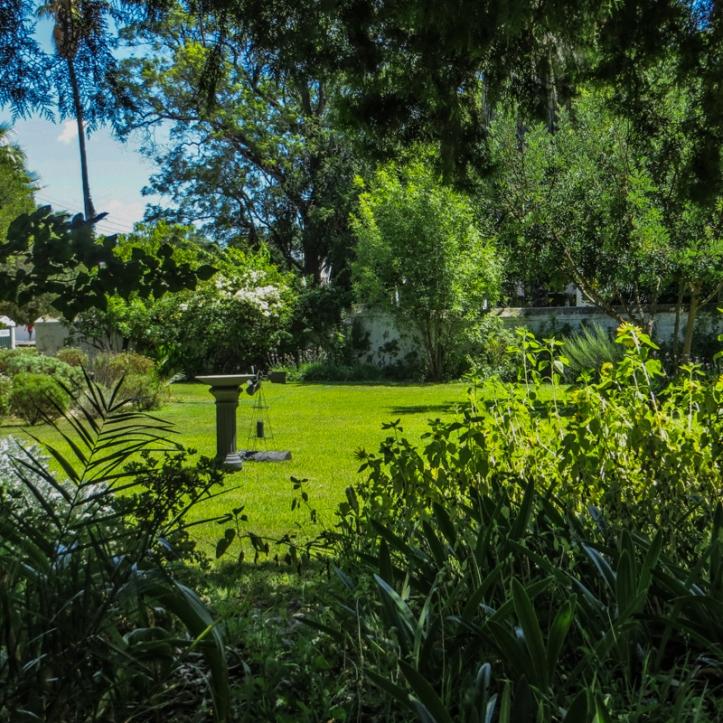 The garden at Reinet House