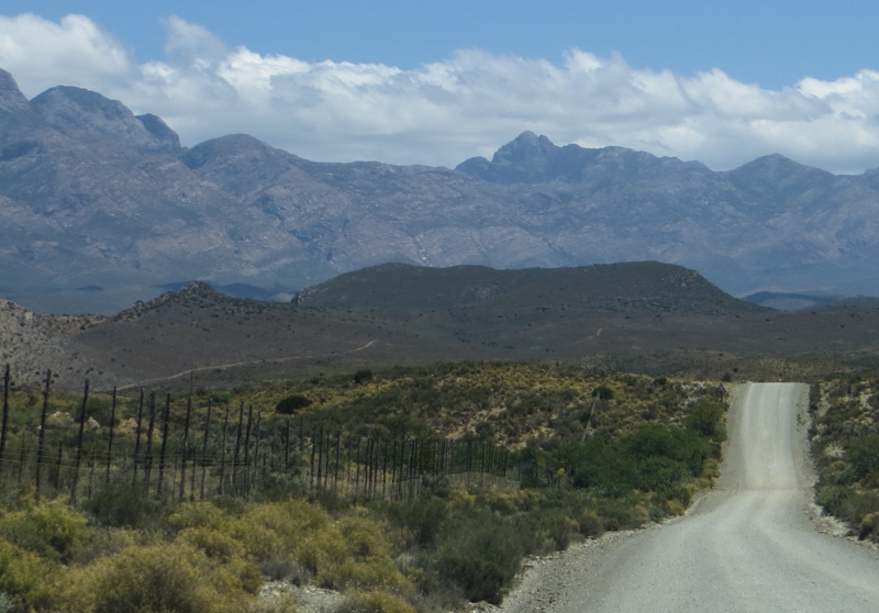 The road from Vondeling to Klaarstroom