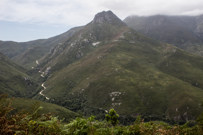 In the Outeniqua Pass