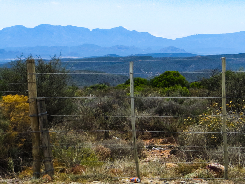 The Swartberg Mountains behind Oudtshoorn