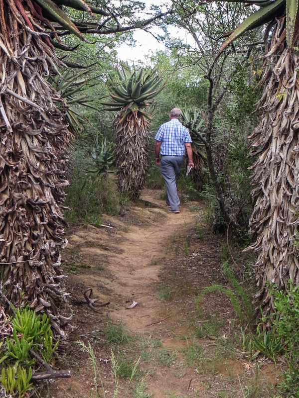 The Aloe Trail, Bontebok National Park