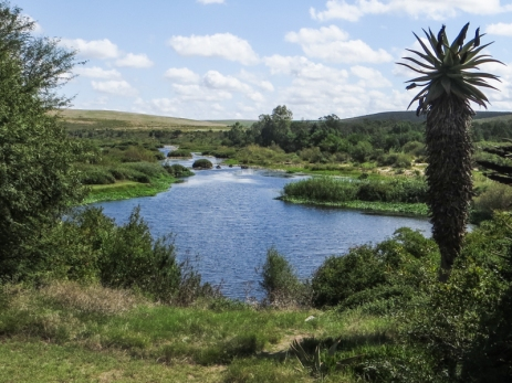 The Breede River