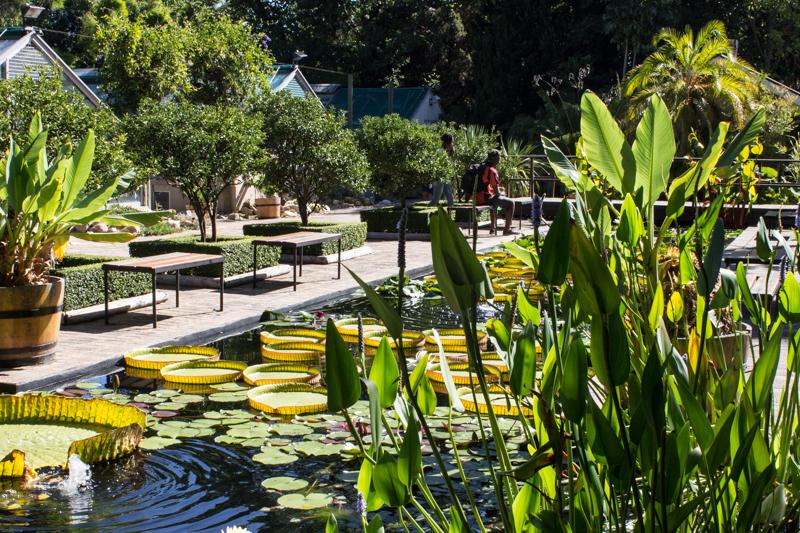 16-2-23 Stellenbosch LR-1183