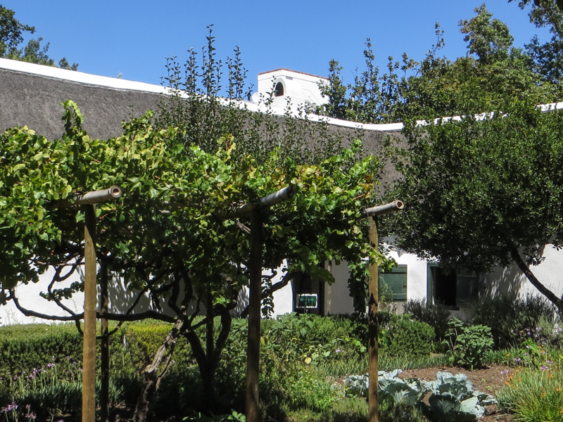 The Schreuderhuis, Stellenbosch, and its fruit & vegetable garden