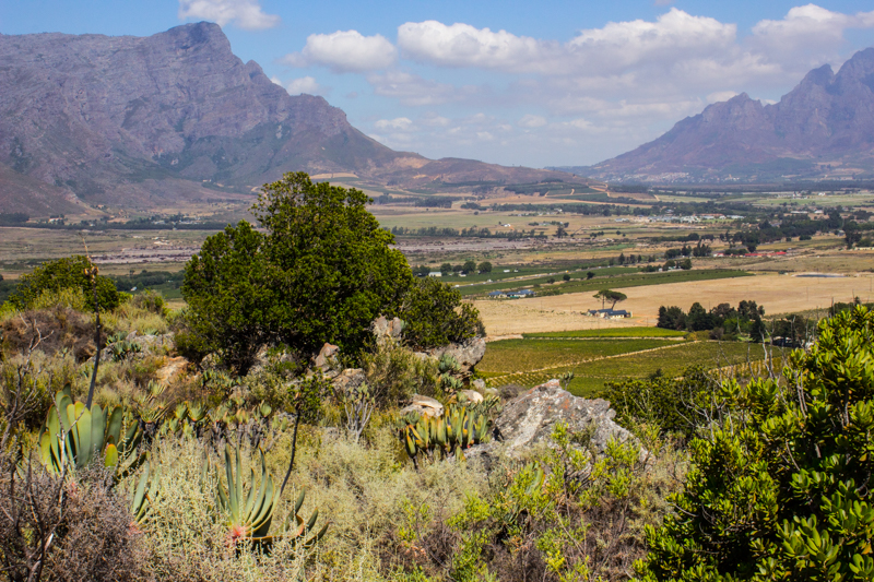 The Franschhoek Valley