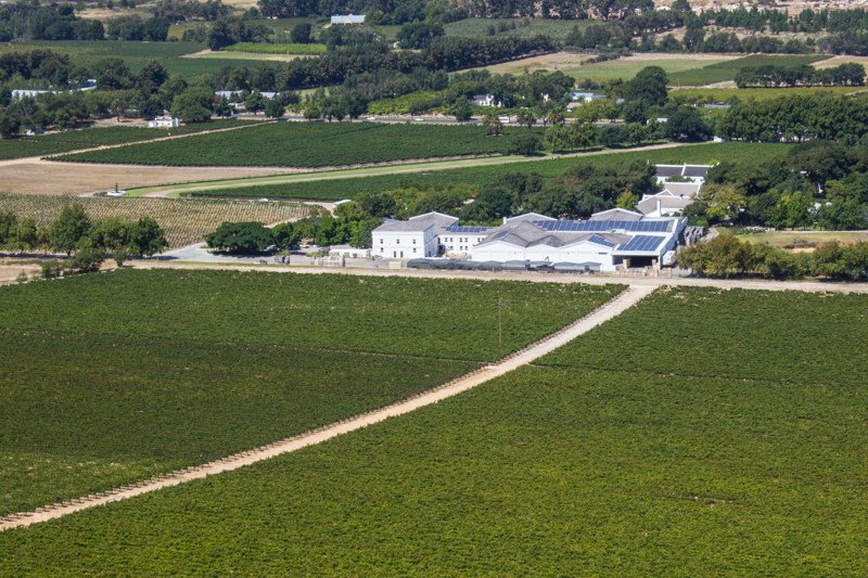 The Vineyards around La Motte