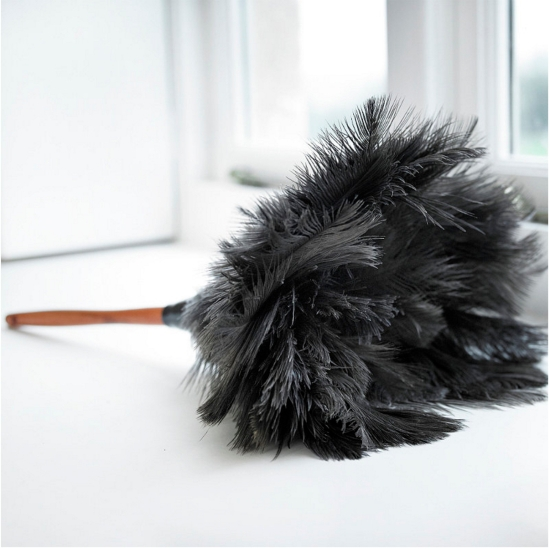 Feather Duster (http://www.lakeland.co.uk/23860/Ostrich-Feather-Duster)