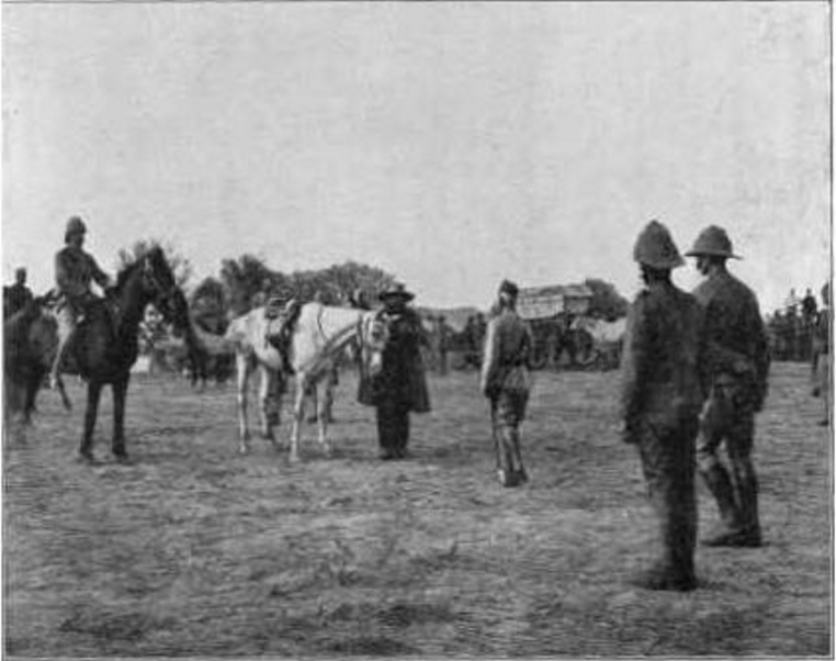 Surrender of General Piet Cronje to Lord Roberts at Paardeberg (https://commons.wikimedia.org/wiki/File:Surrender_of_Cronje.jpg)
