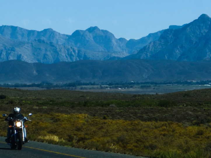 In the Breede River Valley