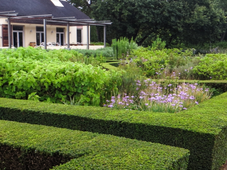 The Herb & Vegetable Garden at Vergelegen