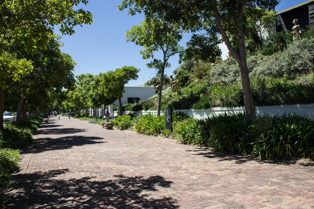 The Avenue at Spier Wine Estate