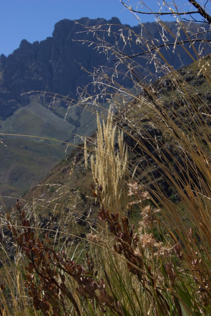 The Jonkershoek Mountains