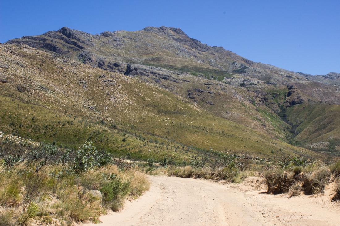 The Jonkershoek Nature Reserve