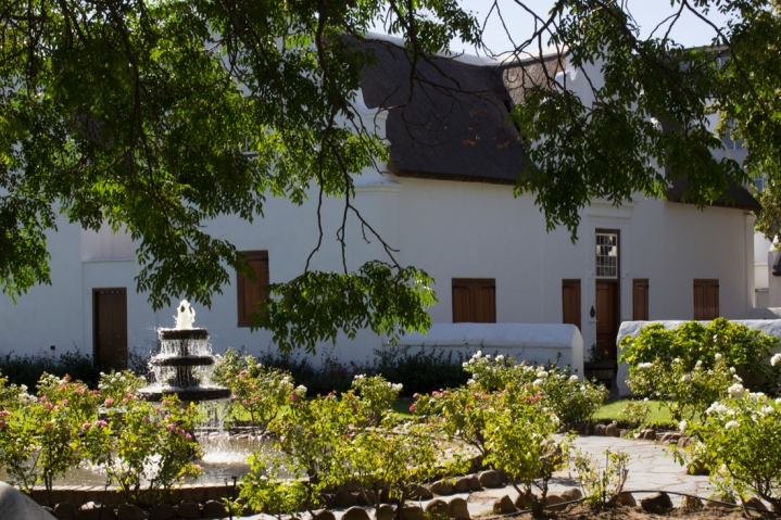 The gardens of Burgher House, Stellenbosch