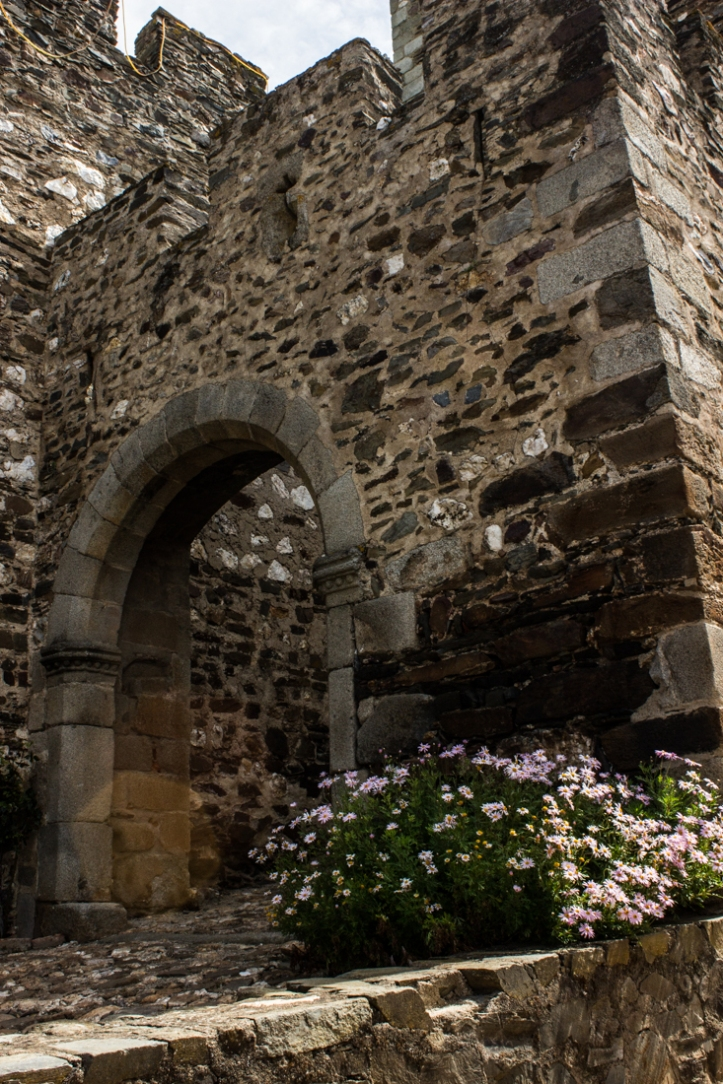The main gate, Terena Castle