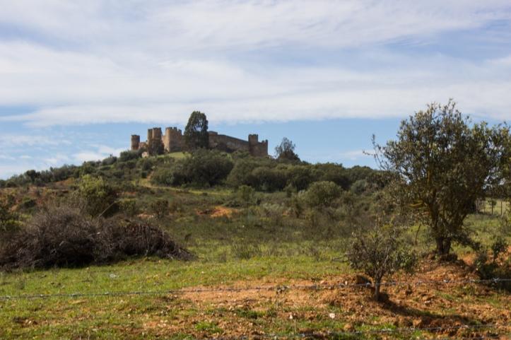 Terena Castle