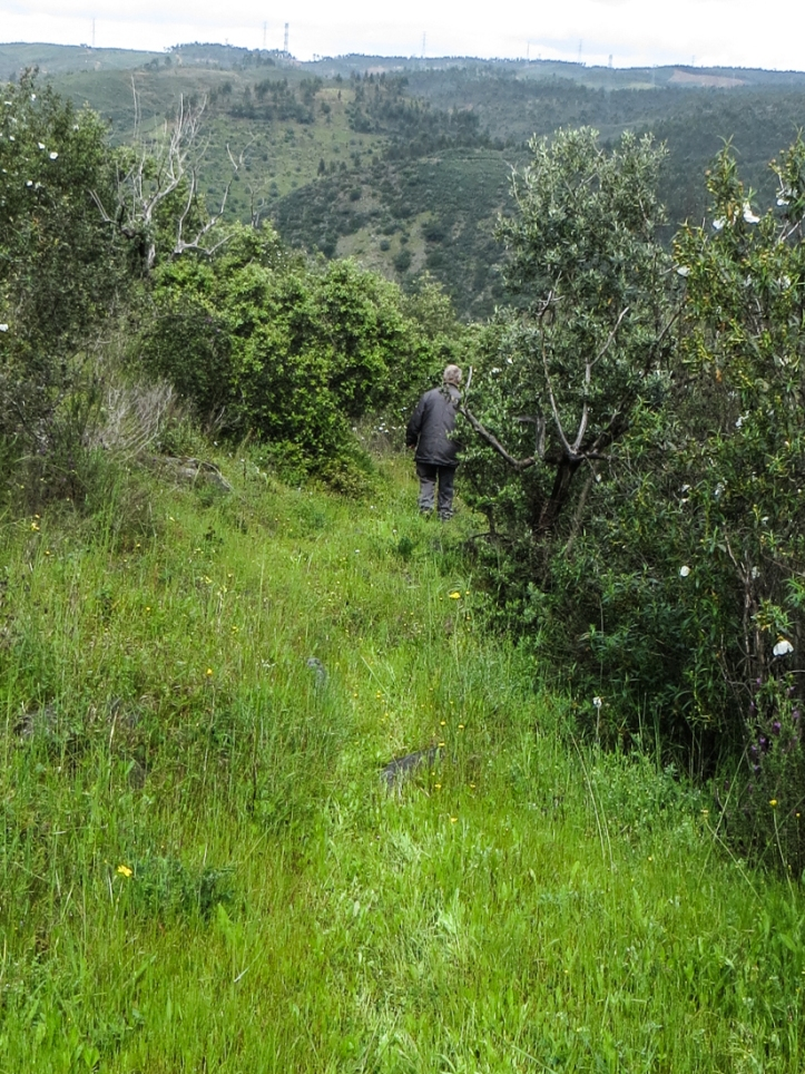 The path down the hillside, Chao da Velha