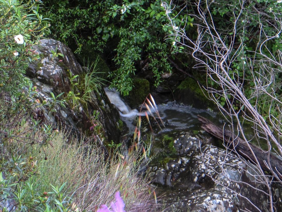 Heading uphill alongside the stream, Chao da Velha