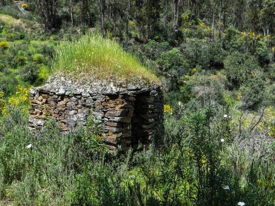 Abandoned shepherd's shelter