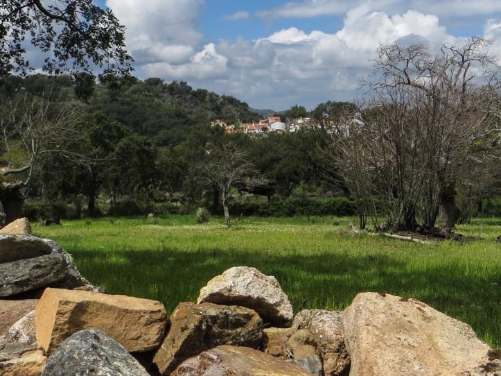 16-4-23 Walk at Galegos LR-0855