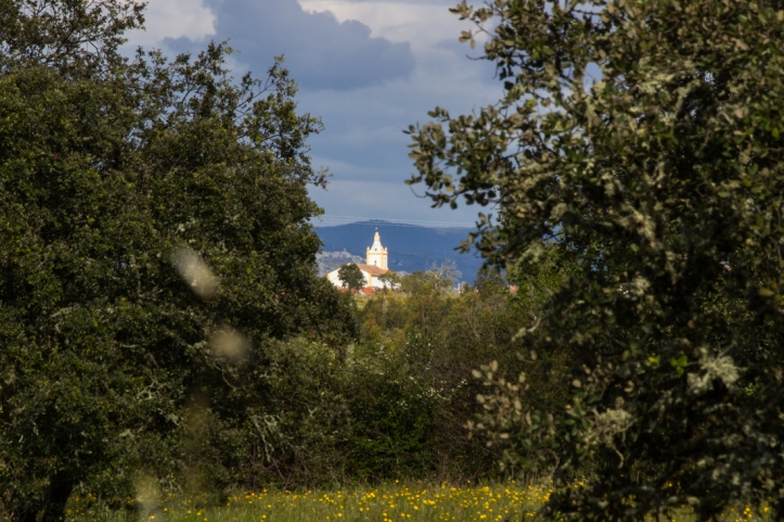 The Church in Flor da Rosa from a distance