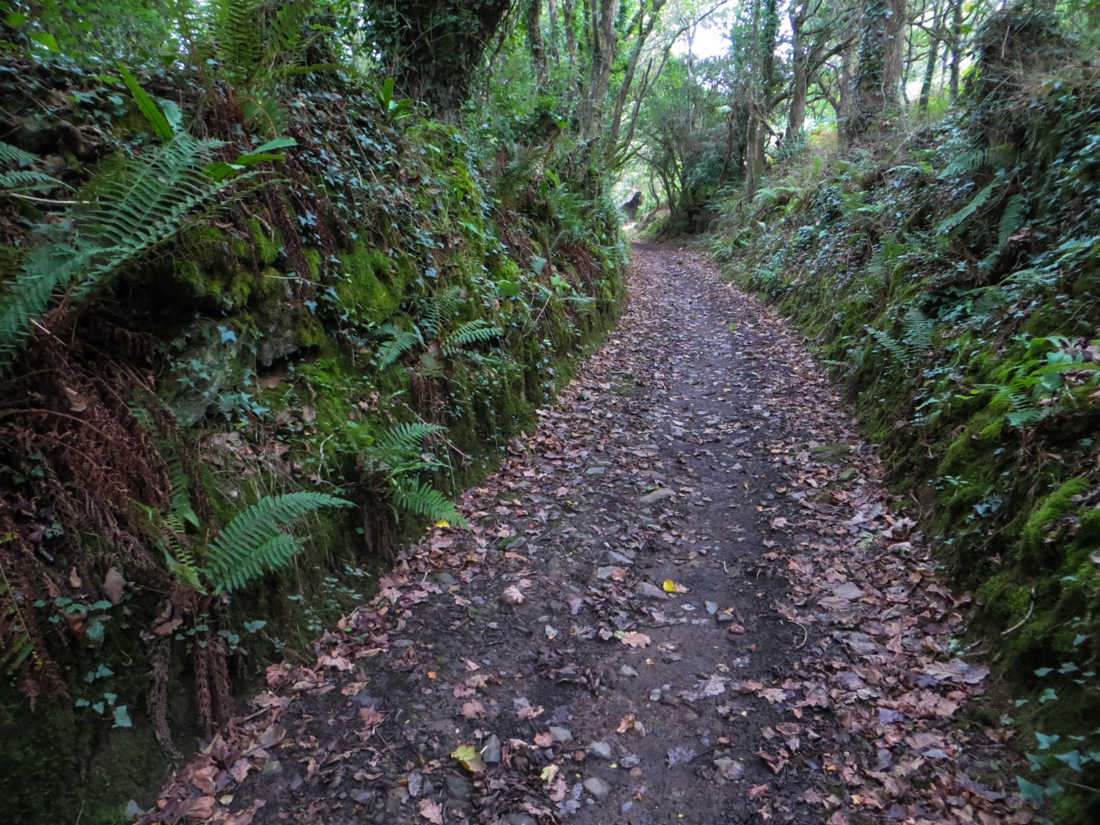 Hidden paths on Walk no.20, Walks in Finistere