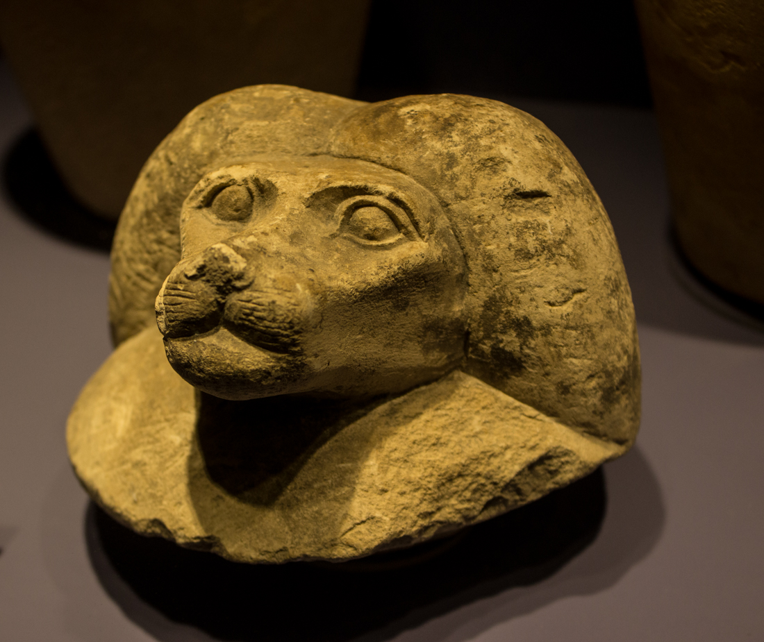 Lid from canopic jar