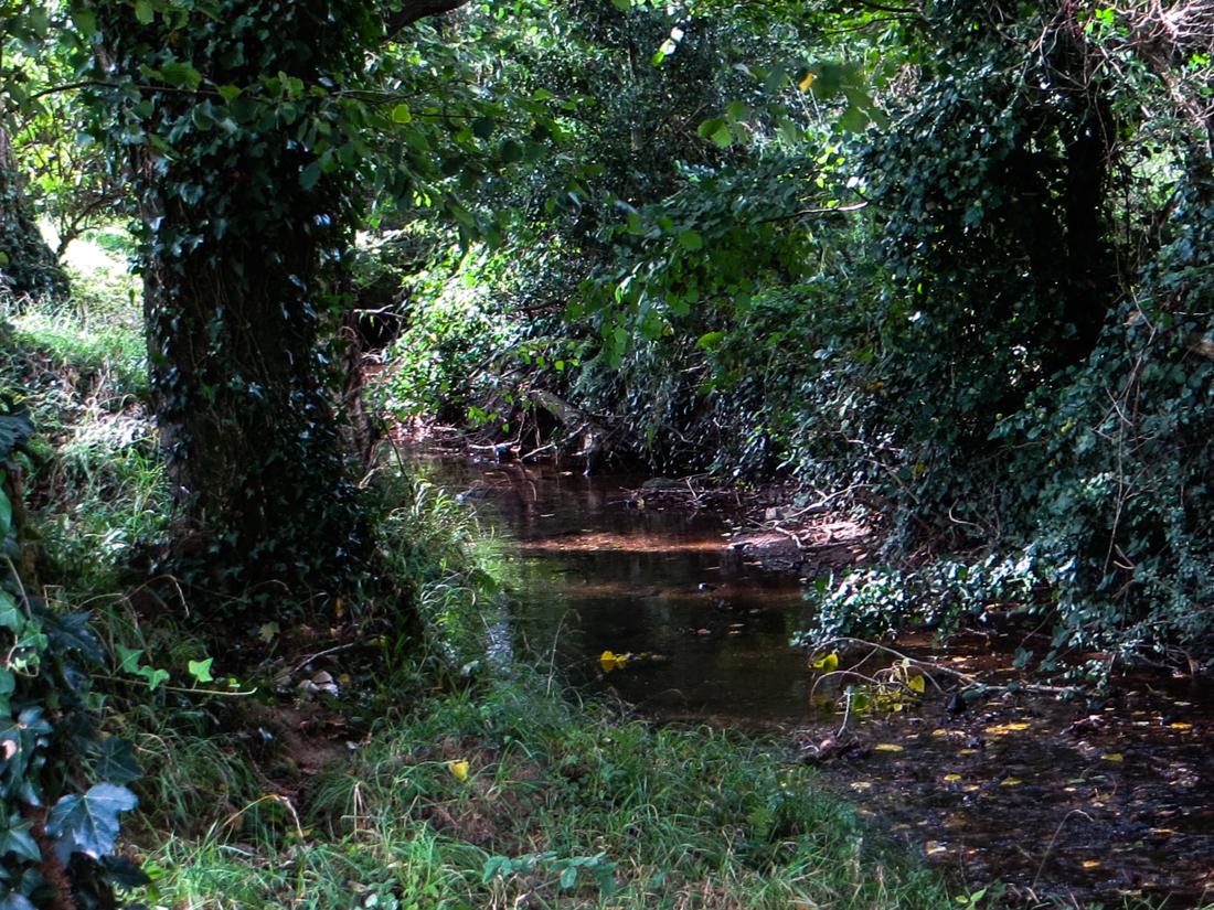 The Ruisseau Kerharo