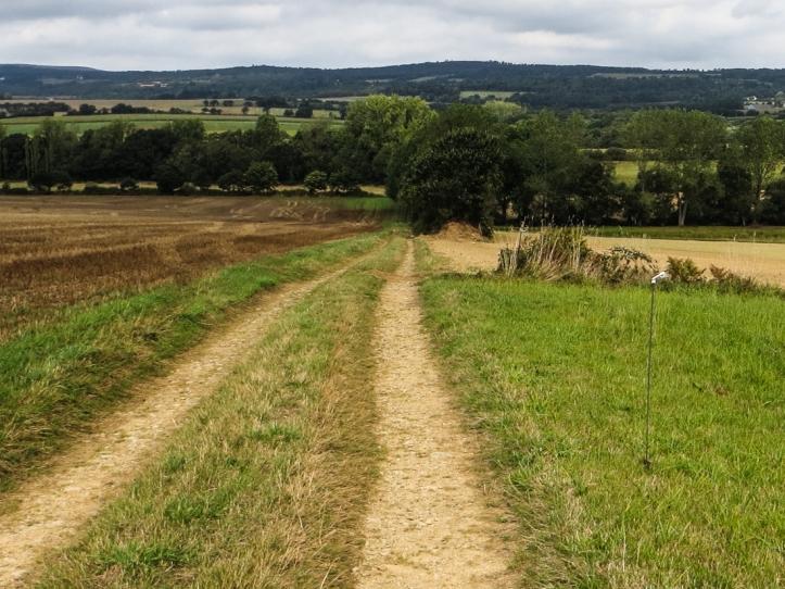 Walk near Cast, Wendy Mewes no.24