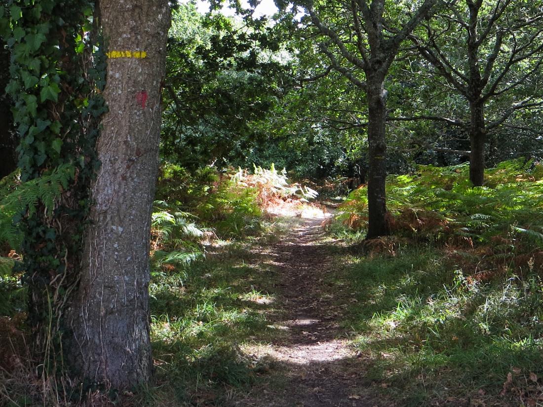 Walk at Plobannalec
